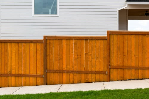 Timber Fencing vs Colorbond: You Decide