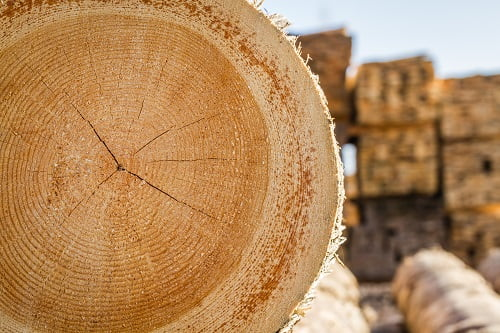 Research and Development in the Timber Industry
