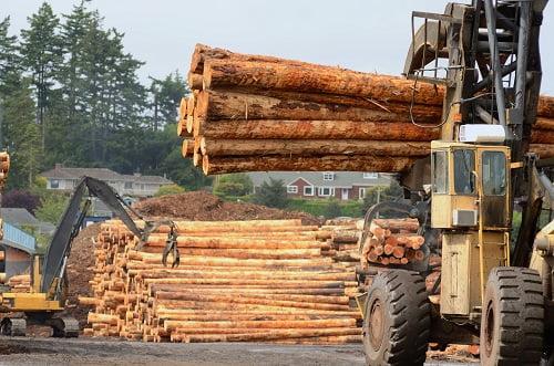 Megatrends in Australian Timber: Part 3