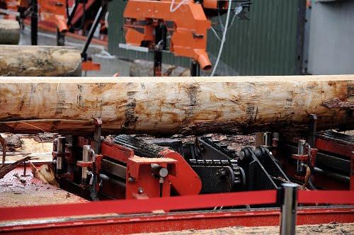 Megatrends in Australian Timber: Part 4