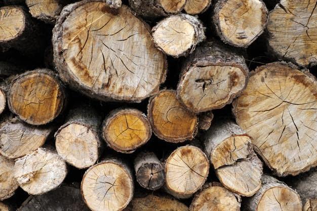 What Makes Narangba Timbers Sustainable?