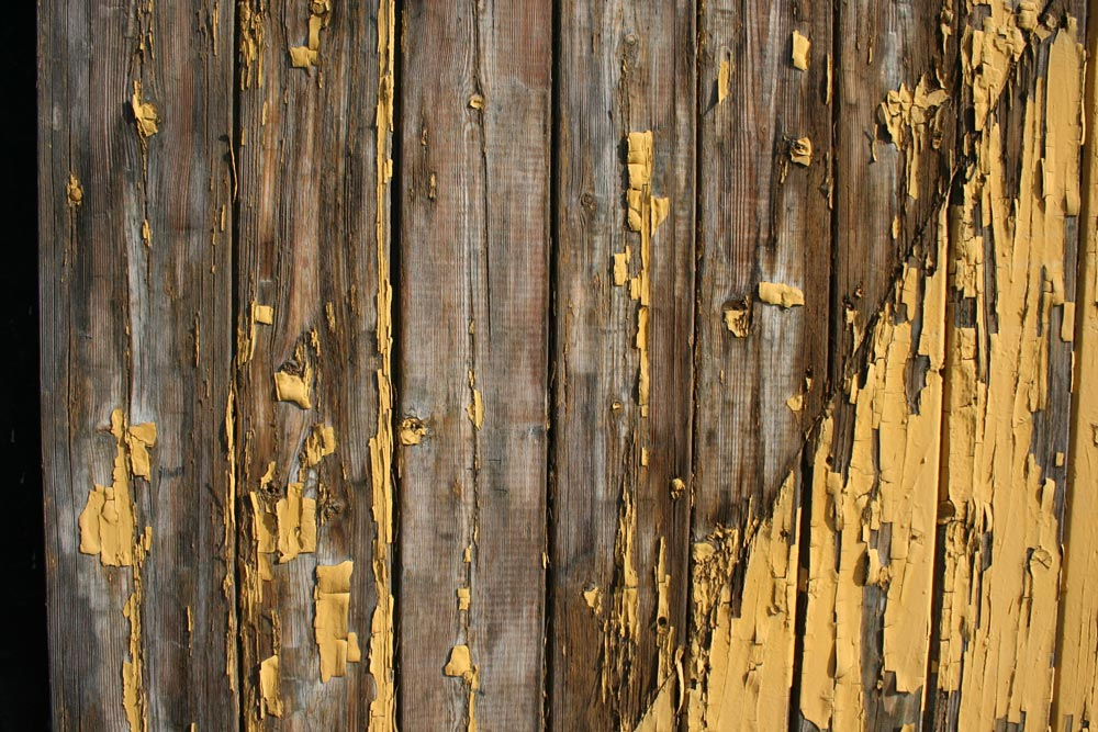 Top tips to extend the life of your timber fence