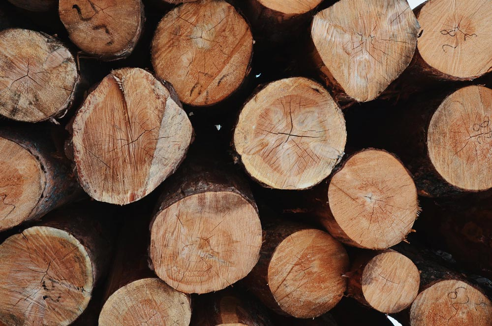 5 best timbers for decking