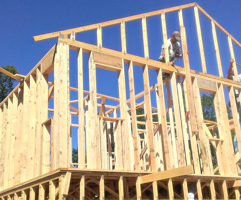 What is the best timber for framing a house?